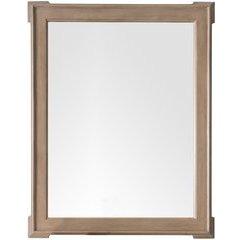 Pasadena 44.25 Inch x 35 Inch Mirror - Warm Taupe