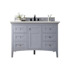 """47"""" Palisades Single Sink Vanity w/ N/A Top - Silver Gray"""