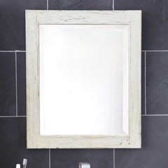 "21-1/2"" x 25-1/2"" Americana Wall Mount Mirror - Whitewash"