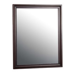 "26"" x 32"" Shawna Wall Mount Mirror - Tobacco"